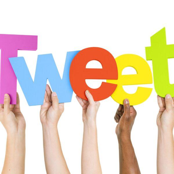Widget Via Twitter Count Followers